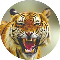 Чехол запасного колеса Тигр 2 R15 диаметр 67см SKYWAY экокожа (полиэстер)