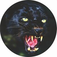 Чехол запасного колеса Черная пантера R16,17 диаметр 77см SKYWAY экокожа (полиэстер)