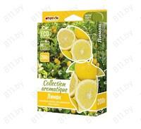 "Ароматизатор ""FOUETTE"" под сидение ""COLLECTION AROMATIQUE"" CA-13 лимон, 200 мл /40"